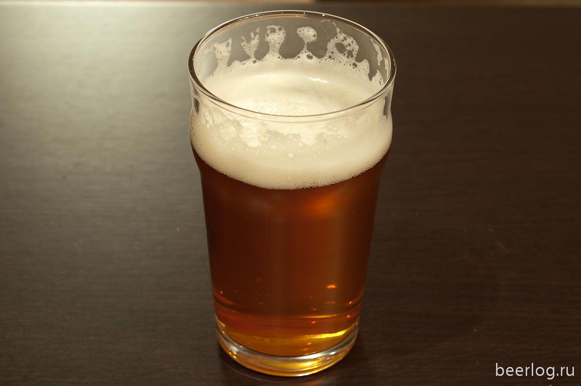 Как сварить домашнее пиво в домашних