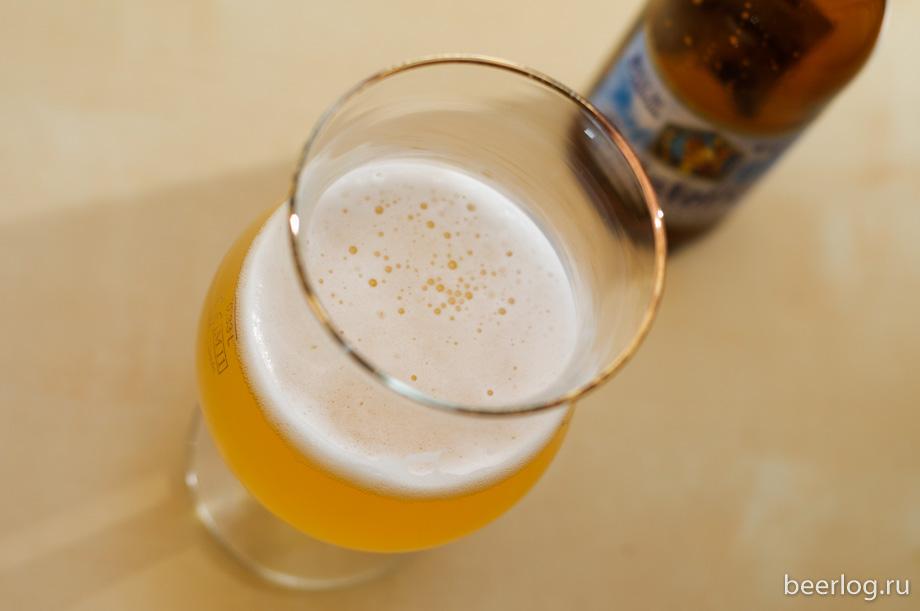 kristoffel_white_beer_2