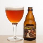 Бельгийская среда: Bruegel