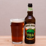 Hogs Back TEA: Traditional English Ale